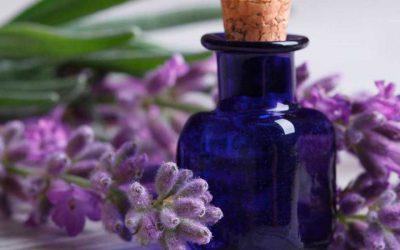 Las propiedades del aceite esencial de lavanda para el pelo