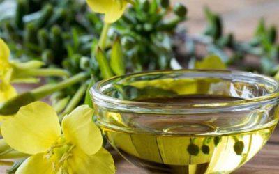 ¿Para qué sirve el aceite de onagra?